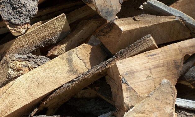 Riciclo del legno: pratica green per una sua nuova vita